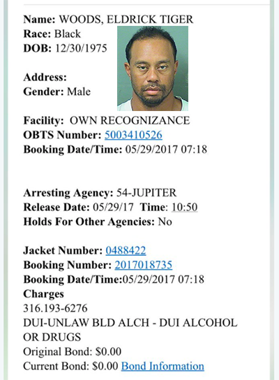 Tiger Woods Arrested May 29-2017